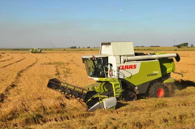 1 Lexion 750 arroz 46 opt1 Manejo planificado, rinde asegurado