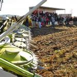 13 EF Ameghino Parada 1 16 150x150 Sintonía práctica para el manejo de alfalfa y sorgo en el Oeste