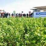 13 EF Ameghino Parada 2 38 150x150 Sintonía práctica para el manejo de alfalfa y sorgo en el Oeste