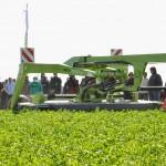 13 EF Ameghino Parada 2 54 150x150 Sintonía práctica para el manejo de alfalfa y sorgo en el Oeste