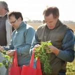 13 EF Ameghino Parada 2 62 150x150 Sintonía práctica para el manejo de alfalfa y sorgo en el Oeste