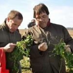 13 EF Ameghino Parada 2 63 150x150 Sintonía práctica para el manejo de alfalfa y sorgo en el Oeste