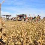 13 EF Ameghino Parada 3 07 150x150 Sintonía práctica para el manejo de alfalfa y sorgo en el Oeste