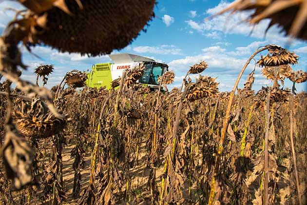 255309 27 opt CLAAS celebrará la innovación argentina en la Rural