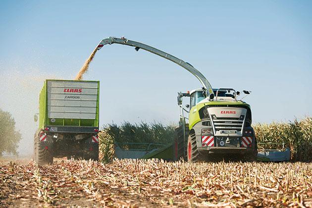 283143 3 opt ¿Cómo picar maíz con alto porcentaje de materia seca?
