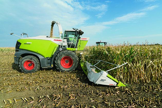 283186 3 opt Cómo hacer silaje de maíz de alta calidad
