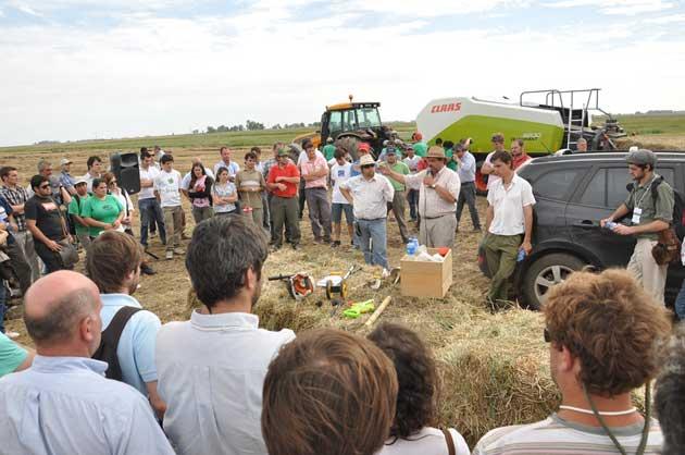5 5ta ExpForrajera Dinamicas 011 opt La producción animal necesita alfalfa