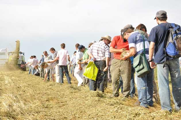 5 5ta ExpForrajera Dinamicas 161 opt La producción animal necesita alfalfa