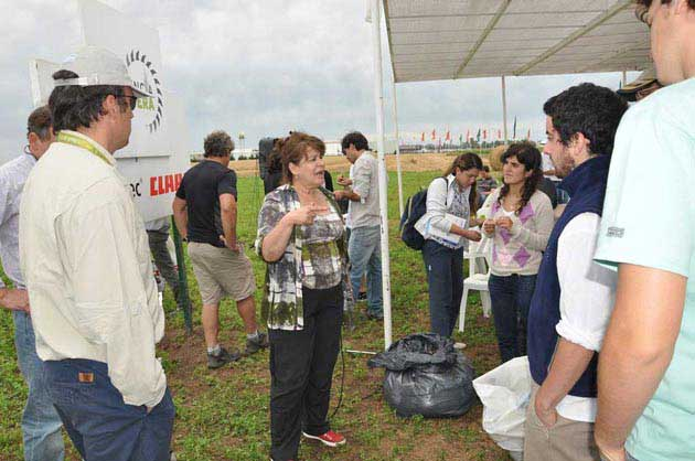 5 5ta ExpForrajera Parada 1 37 opt La producción animal necesita alfalfa