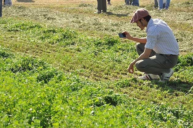 EF Sunchales 5 191 opt Córdoba se afianza como un polo exportador de alfalfa