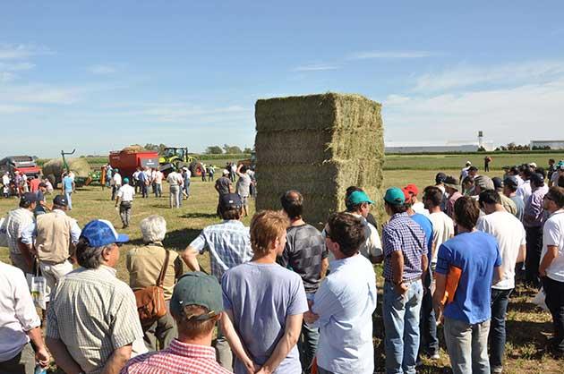 EF Sunchales 5 193 opt Córdoba se afianza como un polo exportador de alfalfa