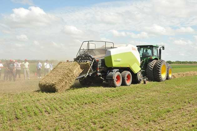 EF Sunchales 5 19 opt Córdoba se afianza como un polo exportador de alfalfa