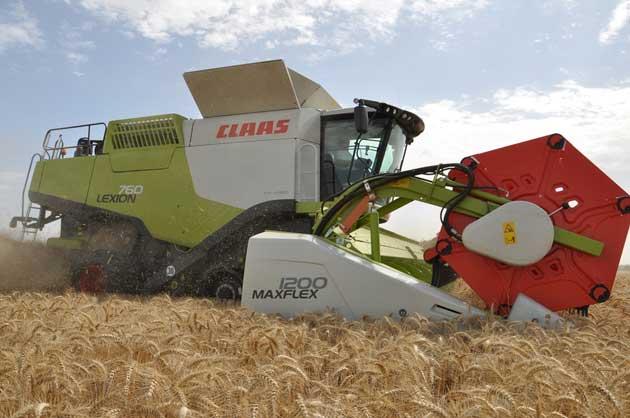 Lexion 760 Trigo 11 opt Las nuevas Lexion ya cosechan en los campos argentinos