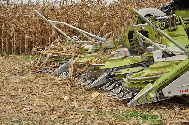 ef Ameghino 2017 CLAAS convoca a un nuevo encuentro de capacitación en forrajes y cosecha
