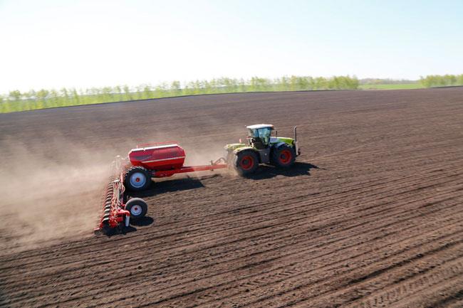 nota 2  17C1452 650 Nuevo récord mundial en plantación de maíz