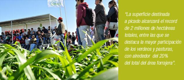 parada 1 09 opt Crece el picado de verdeos y pasturas