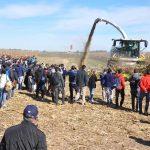 sm 6 19 nota1 10 150x150 Todo el proceso productivo de la alfalfa y el maíz en una jornada a campo