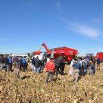sm 6 19 nota1 6 150x150 Todo el proceso productivo de la alfalfa y el maíz en una jornada a campo