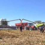 sm 6 19 nota1 7 150x150 Todo el proceso productivo de la alfalfa y el maíz en una jornada a campo